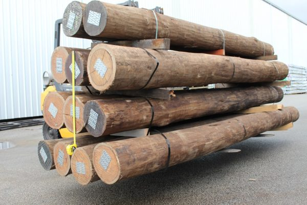 2. New Spotted Gum H4 ACQ Bush Pole (Medium)